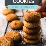 Vegan Coconut Almond Cookies